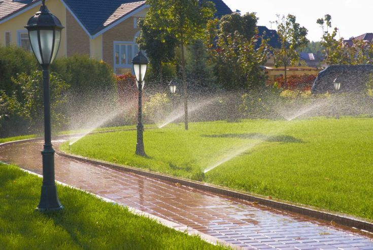 How Do Sprinkler Systems Work? in 2020 Yard drainage