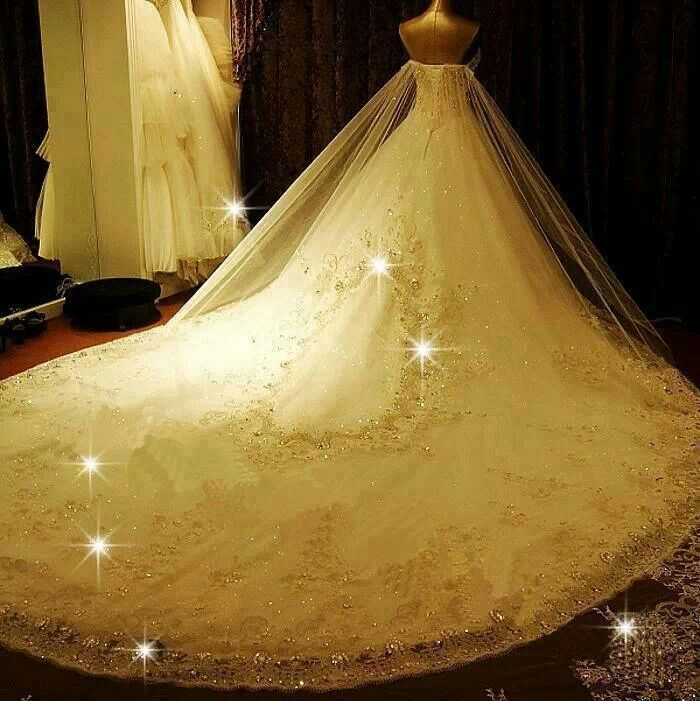 Beautiful Wedding Dress With Extra Long Train
