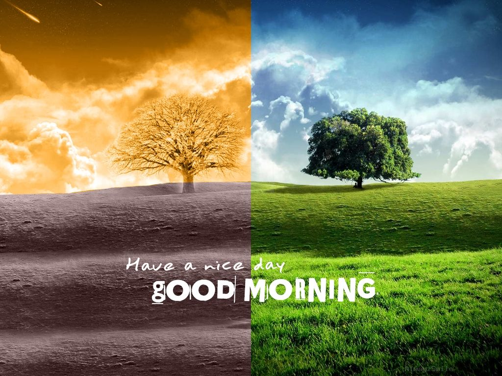 Morning Quotes For Loved Ones Love This One. Just Saying Pinterest  Happy Morning