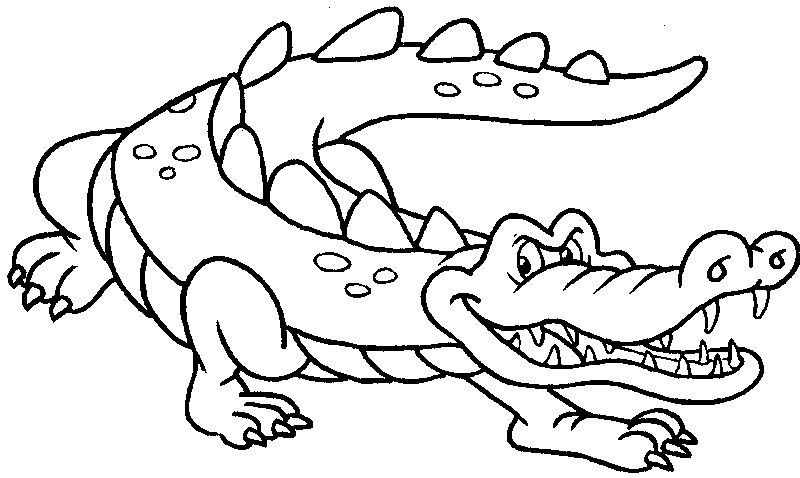 Crocodiles With The Sharp Nails Crocodiles Pinterest Sharp - new alligator coloring pages to print