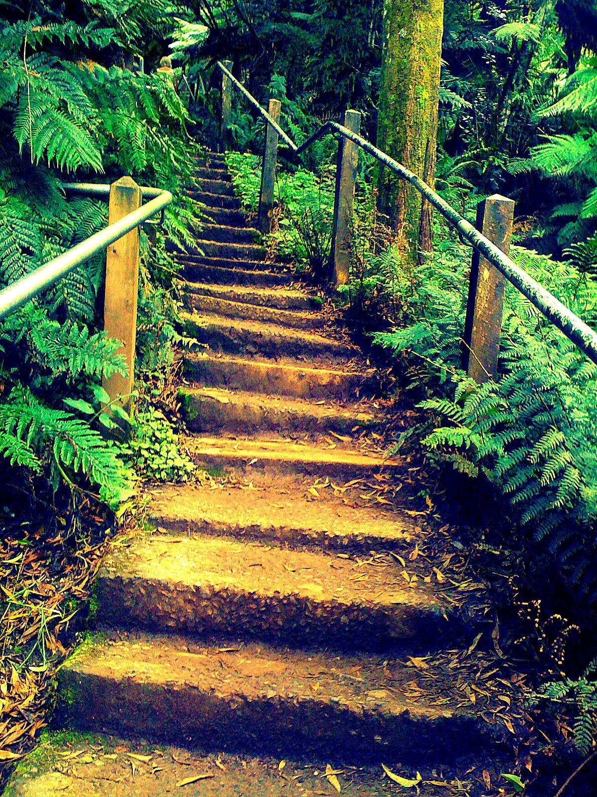 love stairs Forest air, Places to visit, 1000 steps