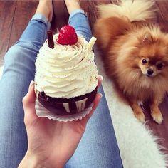 ♔ Cupcakes . Uℓviỿỿa S.