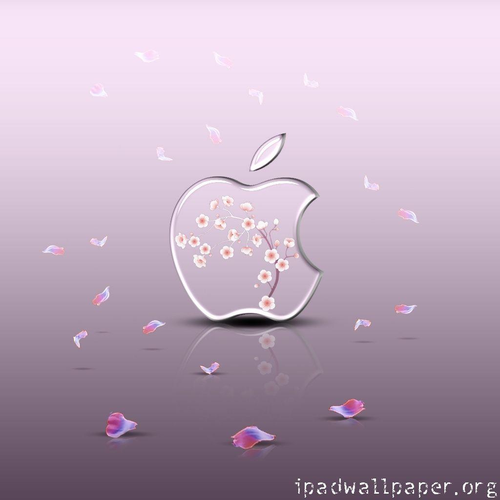 Download Wallpaper Hello Kitty Sakura - e6be77ba6db32227d0a40c46a38e3e7f  Snapshot_906418.jpg