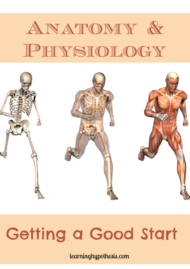 Anatomy & Physiology: Getting a Good Start. | Gre | Pinterest | Anatomy