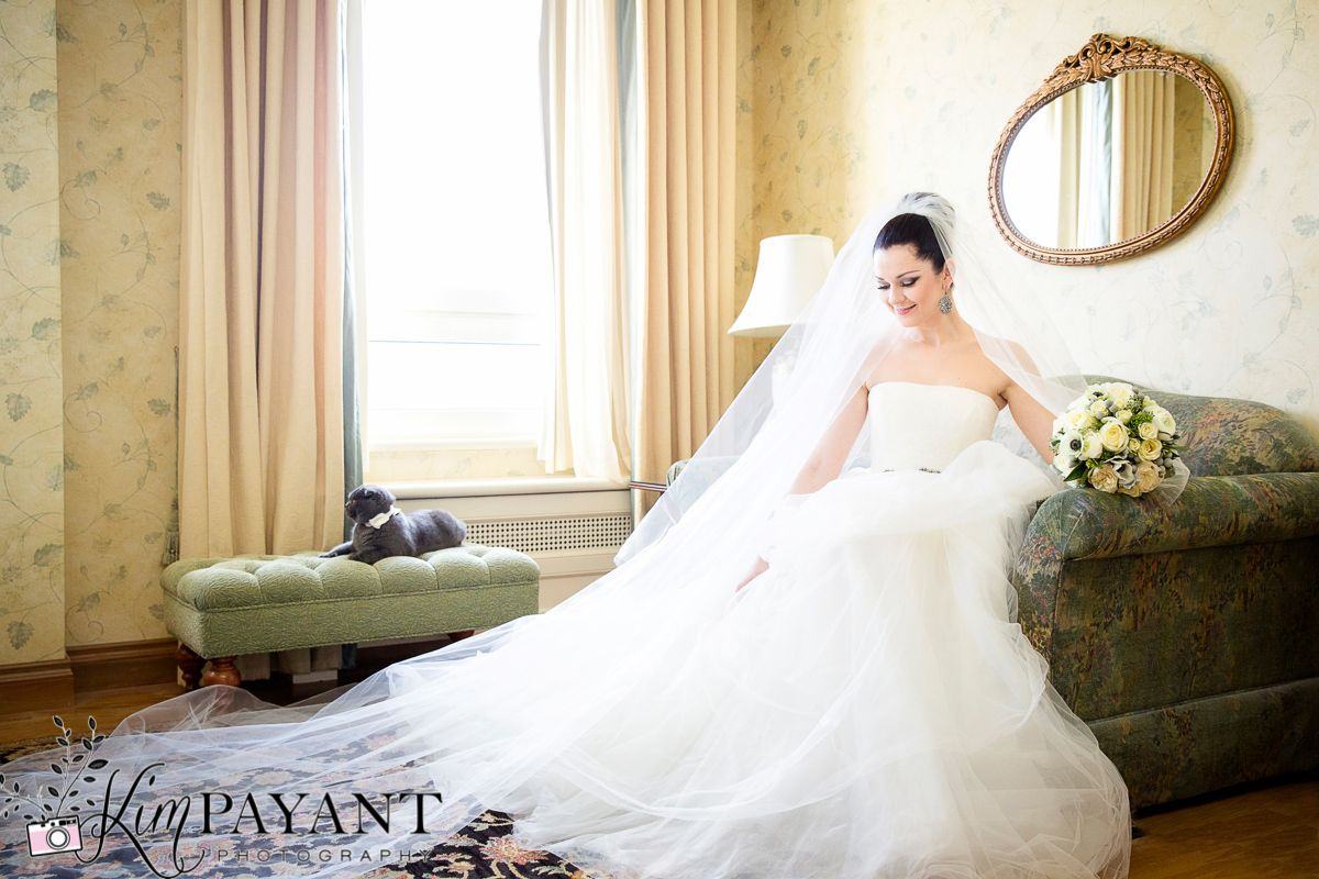 Cat in wedding dress  Bridal portrait bride with her cat Banff wedding photographer