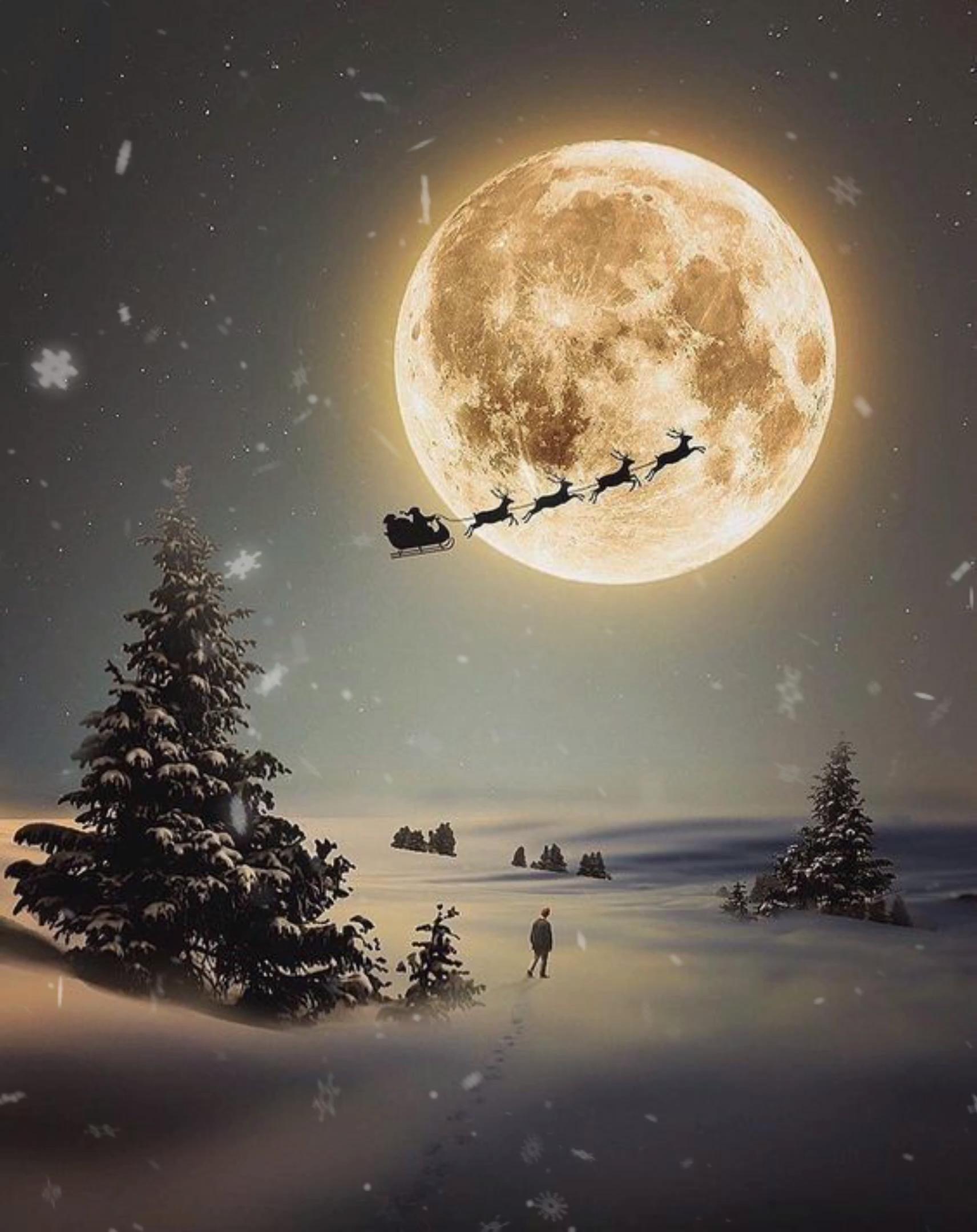 🌲🎁🎅🏼 Christmas Stuff 🌲🎁🎅🏼