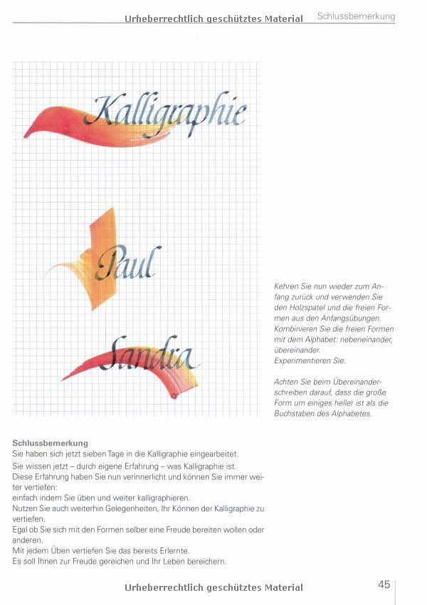 Das 7-Tage-Einsteigerprogramm: Kalligraphie: Mit Skizzen für alle Motive: Amazon.de: Hans Maierhofer: Bücher