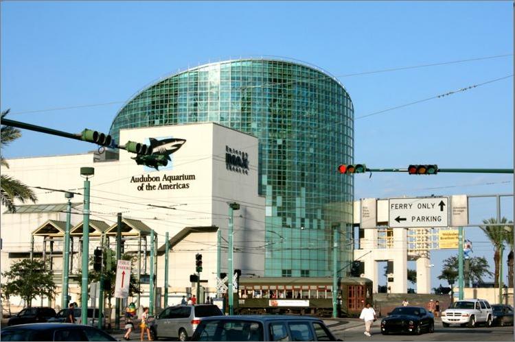 Audubon Aquarium Of The Americas New Orleans Google
