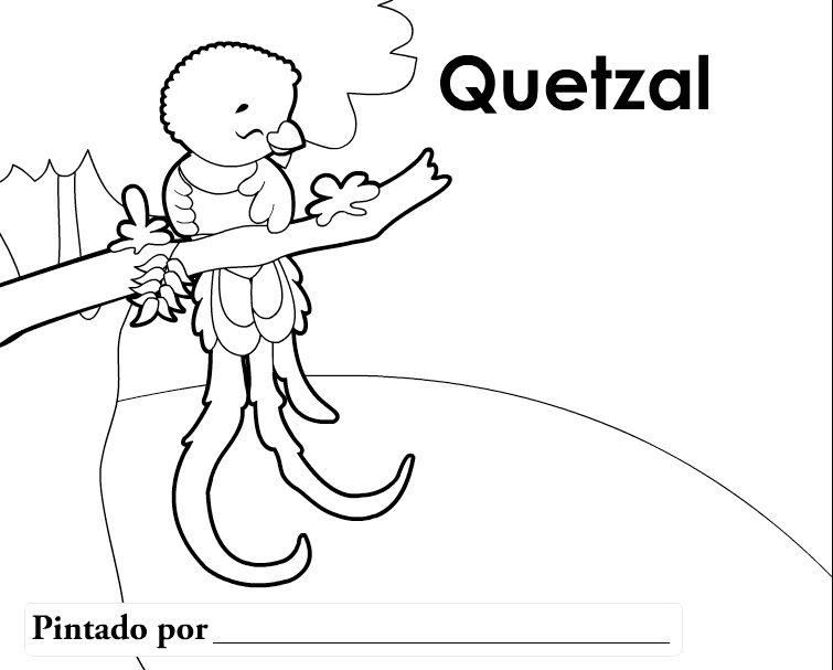 Resultado De Imagen Para El Quetzal Dibujo Animado Con Imagenes
