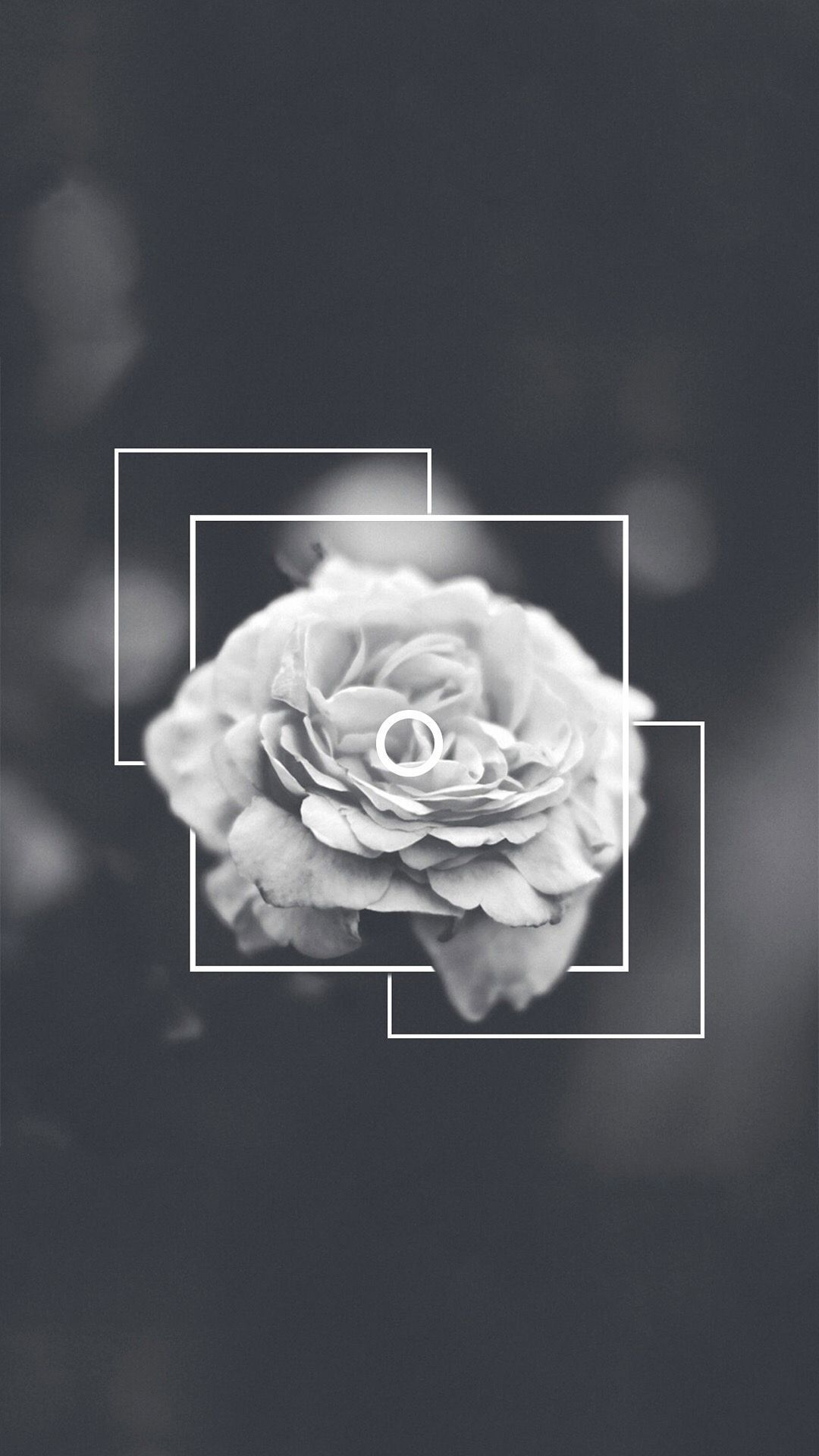 130 Flower Aesthetic Android Iphone Desktop Hd Backgrounds Wallpapers 1080p 4k Wallpaper Iphone Tumblr Grunge Flower Phone Wallpaper Tumblr Iphone Wallpaper