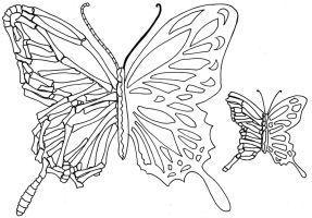 Photo of Halb-Skelett-halb-lebendiges Schmetterlings-Tattoo-Design von littlenatnatz101 – #