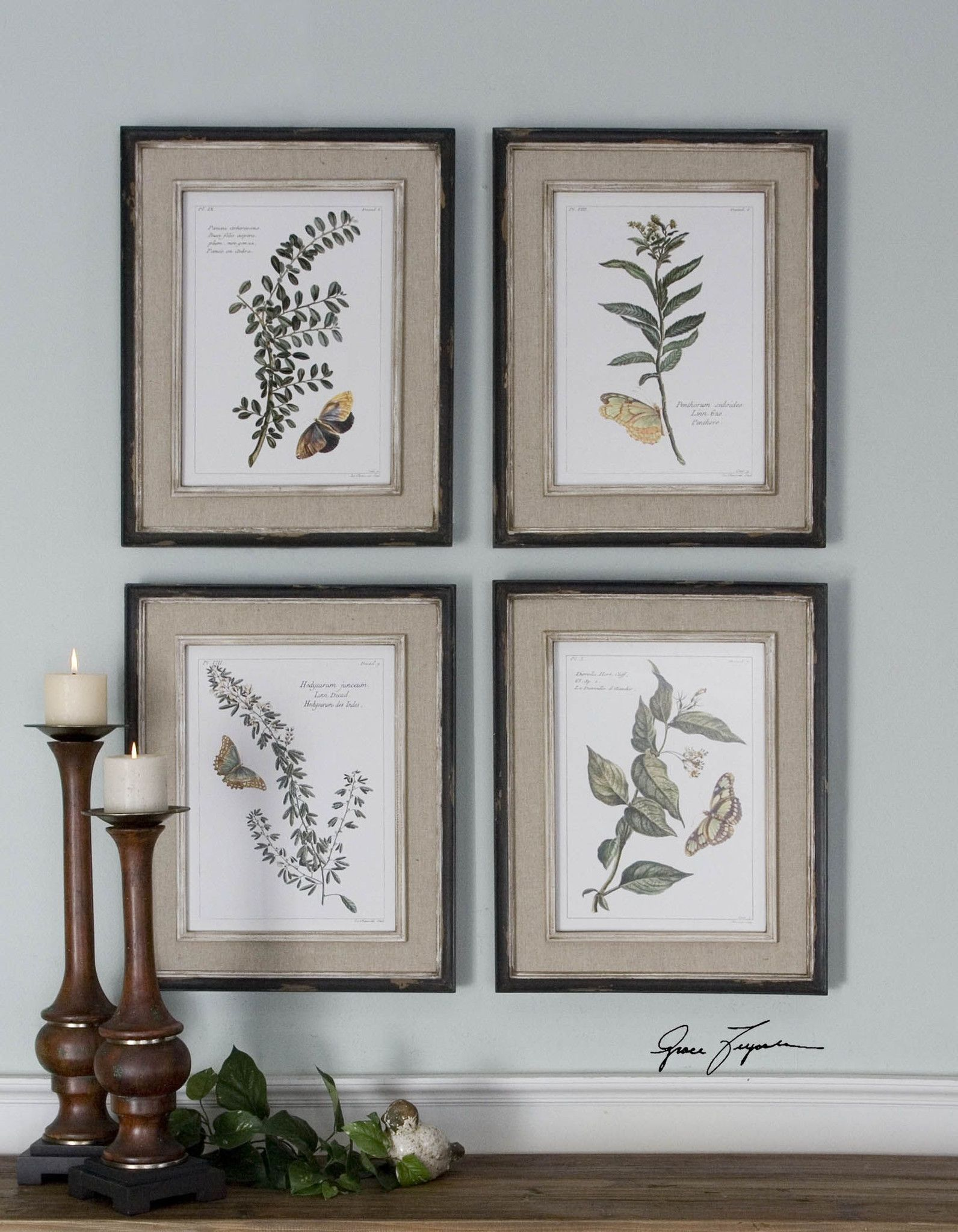 Uttermost Butterfly Plants Framed Art, S/4 | Products | Pinterest ...