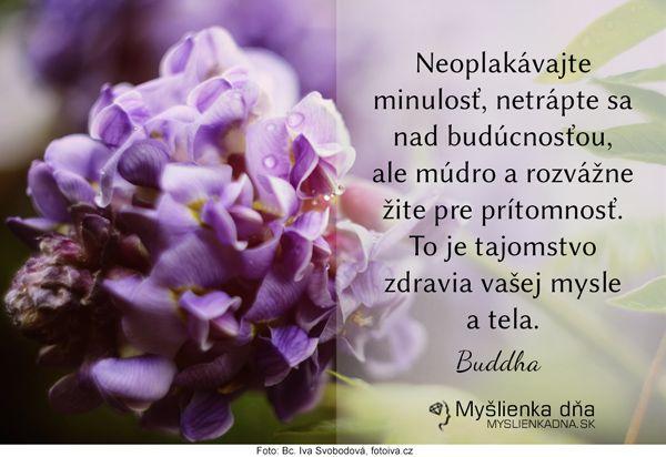 Neoplakávajte minulosť, netrápte sa nad budúcnosťou, ale múdro a rozvážne žite pre prítomnosť. To je tajomstvo zdravia vašej mysle a tela. Buddha