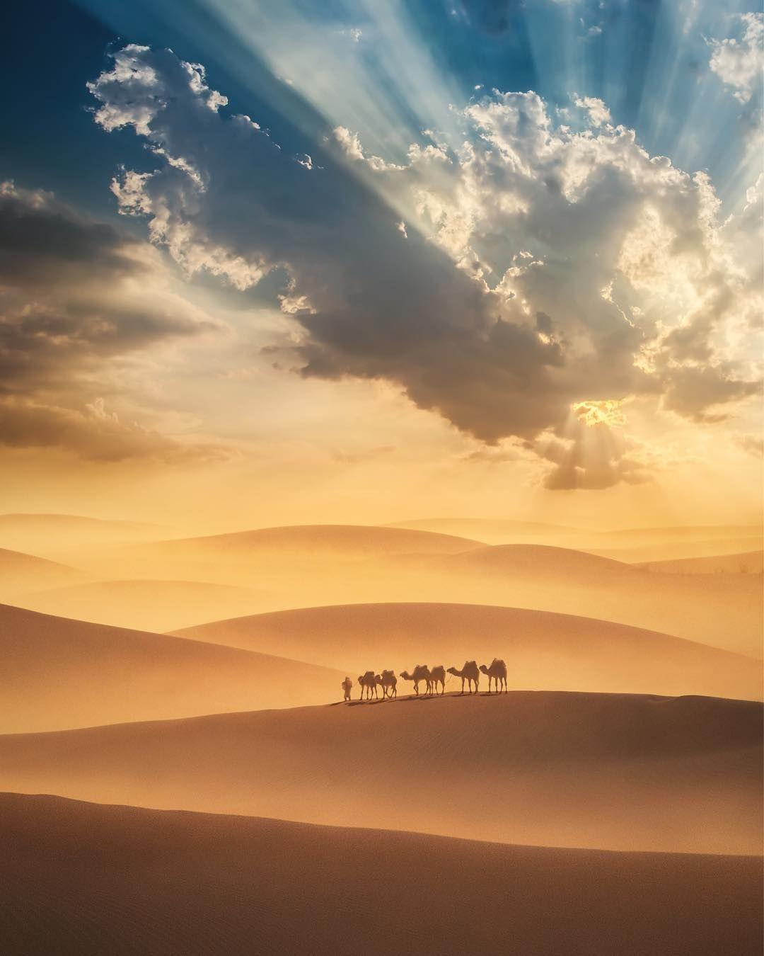 Egypt Desert Travel Desert Photography Earth Pictures Desert Sunset