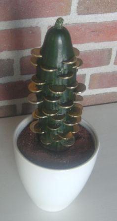 Verjaardagskado Geld Cactus Bijzondere Cadeaus