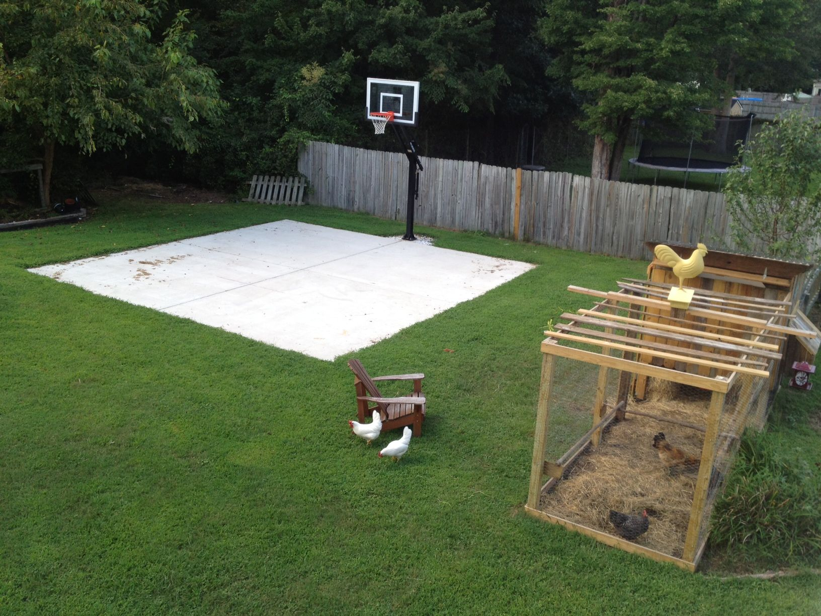 Backyard basketball on a concrete slab. Well done ...