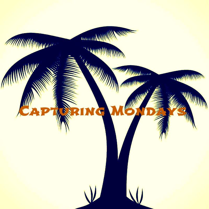 50++ Best Small palm tree tattoo outline image ideas