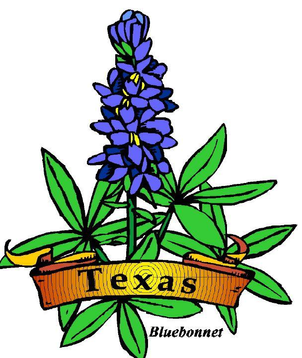 texas clip art free texas symbols free cliparts that you can rh pinterest com bluebonnet clipart border free texas bluebonnet clipart