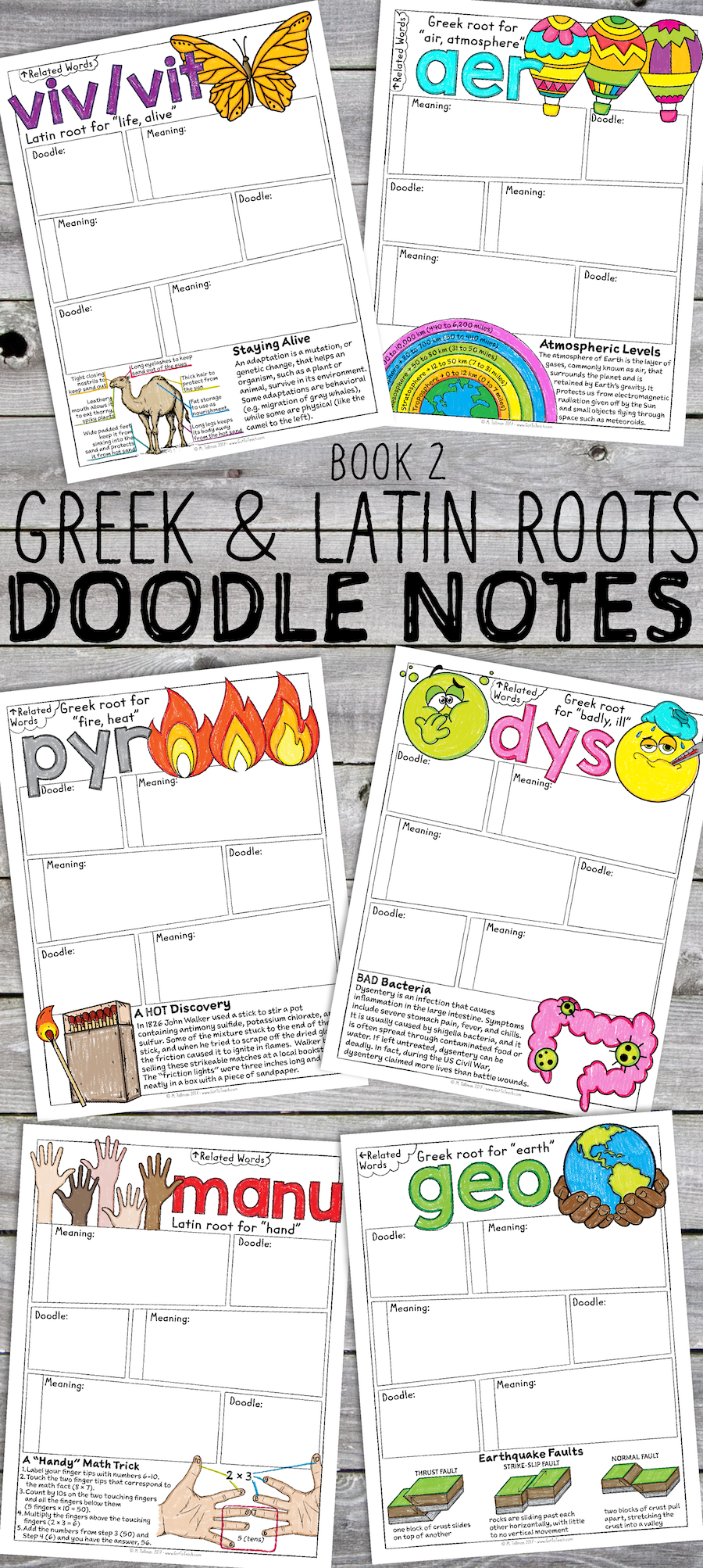 Arte Latin Root Greek And Latin Roots Sketch Notes Book 2 Lessons Pinterest