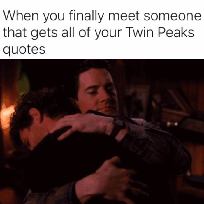 e6c3643bc4b74bf47aefe251aed8f754 23 damn fine memes you'll only get if you love twin peaks twins