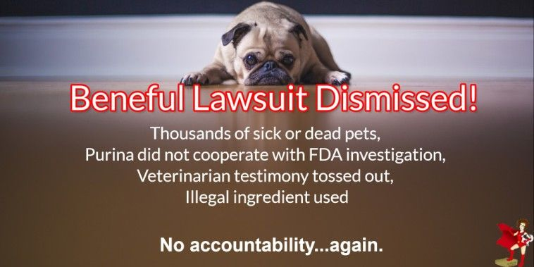 Purina Beneful Walks Away From Accountability Pet Food Safety