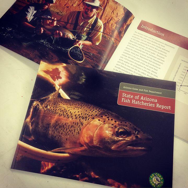 What's printing today? @azgfd #fish #fishing #arizona #az #azfishing