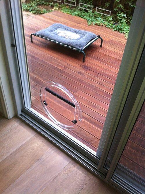 Melbourne Pet Doors Glass Cat Flaps Dog