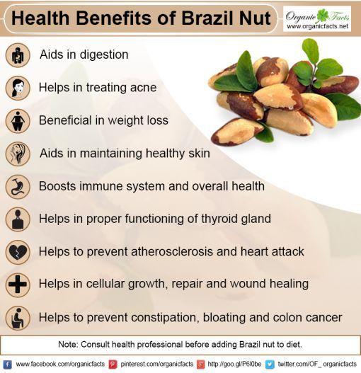 Health Benefits Of Brazil Nut Coconut Health Benefits Nutrition Health