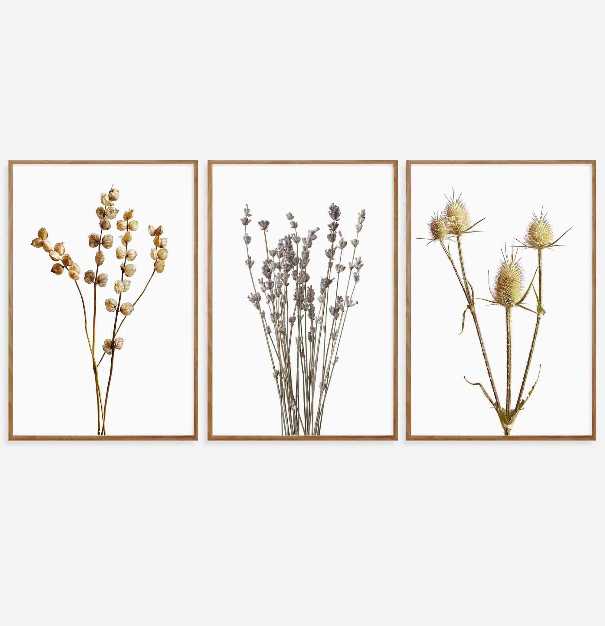 Wildflower Prints Set Of 3 Digital Download Wildflower Wall Etsy Floral Wall Art Minimalist Prints Botanical Prints