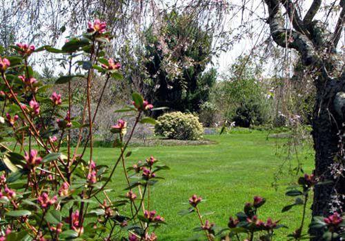 Tower Hill Botanical Garden in Boylston, MA http://www.towerhillbg ...