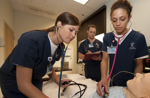 University Of Missouri St Louis Nursing