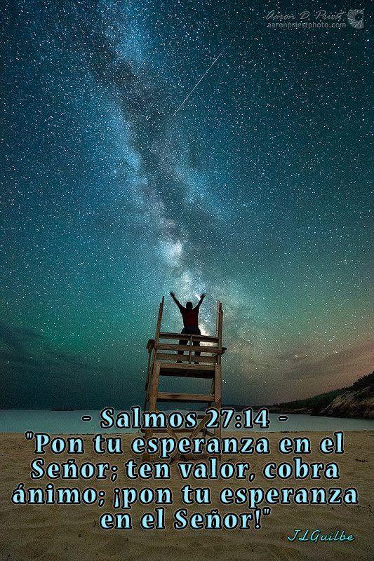 Salmos 27 14 Pon Tu Esperanza En El Senor Ten Valor Cobra Animo Pon Tu Esperanza En El Senor Textos Biblicos Salmo 27 14 Versiculos Biblicos
