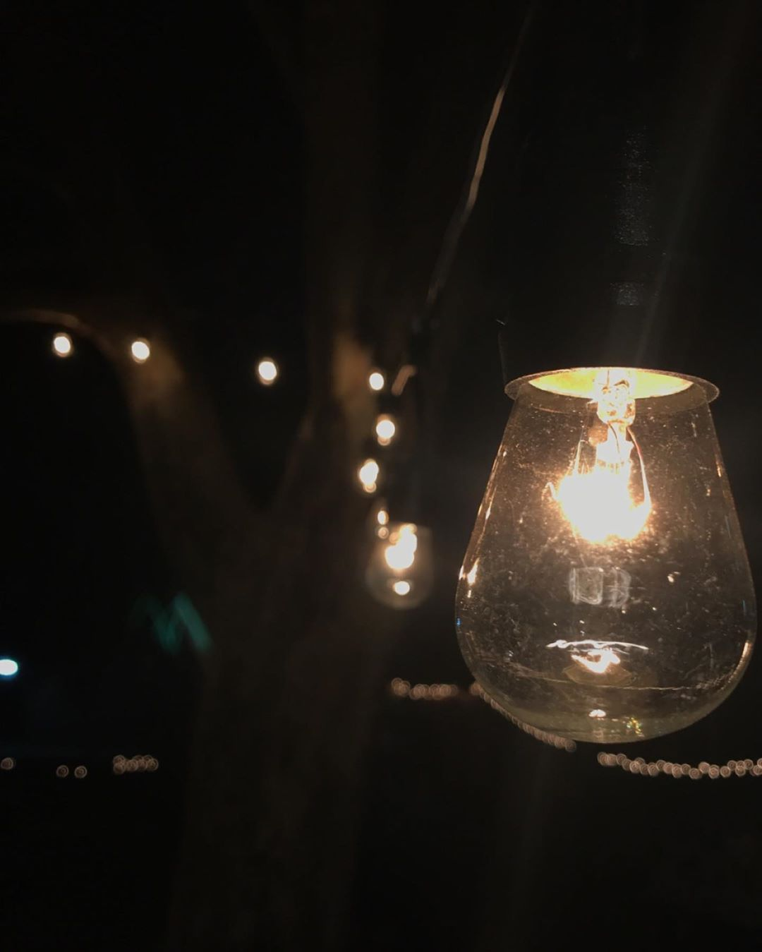 Photography lights bulbs nature night party stream