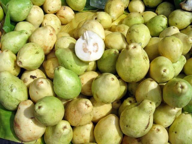 What Are Some Tropical Fruits Native To Mexico Tropical Fruit