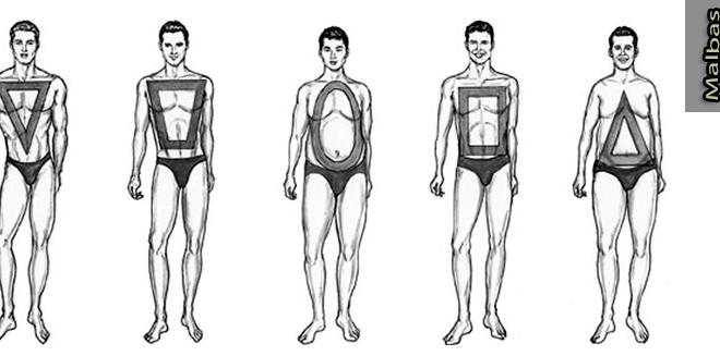 أشكال أجسام الرجال وما يناسبها من ملابس Mens Body Types Drawing Poses Male Body