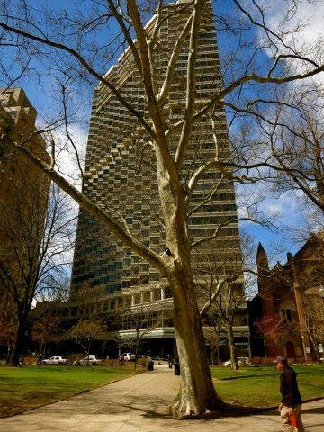 Rittenhouse Hotel In Philadelphia Pa Luxury Renewed