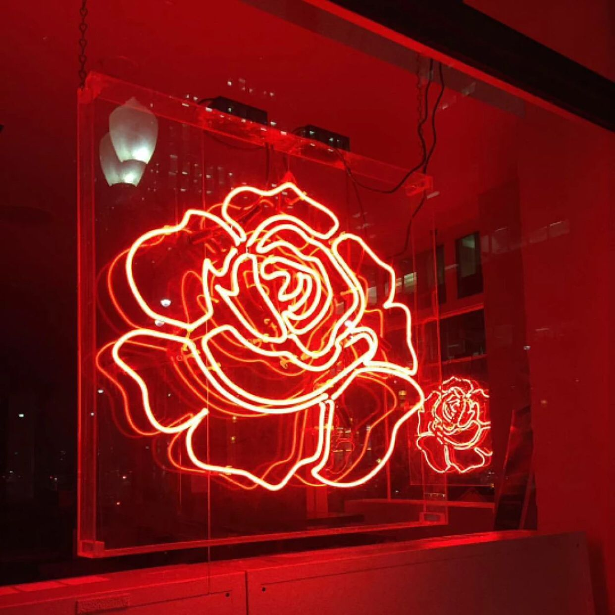 Neon Rose Aesthetic colors, Neon signs