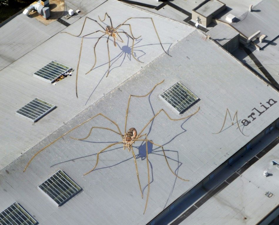 Marlin Peterson got this great idea. he made An agreement with the Seattle Center Armory (formerly the Center House) and he quickly began work on two daddy long-leg spiders using a technique called trompe l'oeil that creates the illusion when seen from above that giganto arachnids are actually overtaking the building.