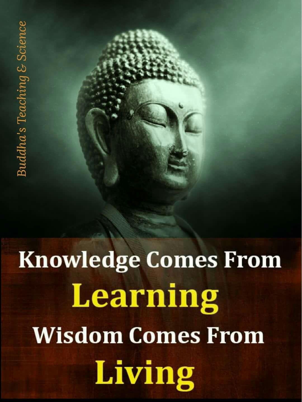 Buddha Quotes About Friendship Pinparmendar Kumar On Spirituality  Pinterest  Buddha