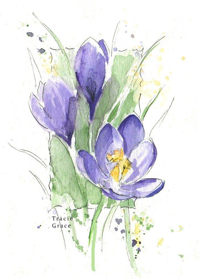 Crocus Web Watercolorarts Blumen Malen Blumen Aquarell Und
