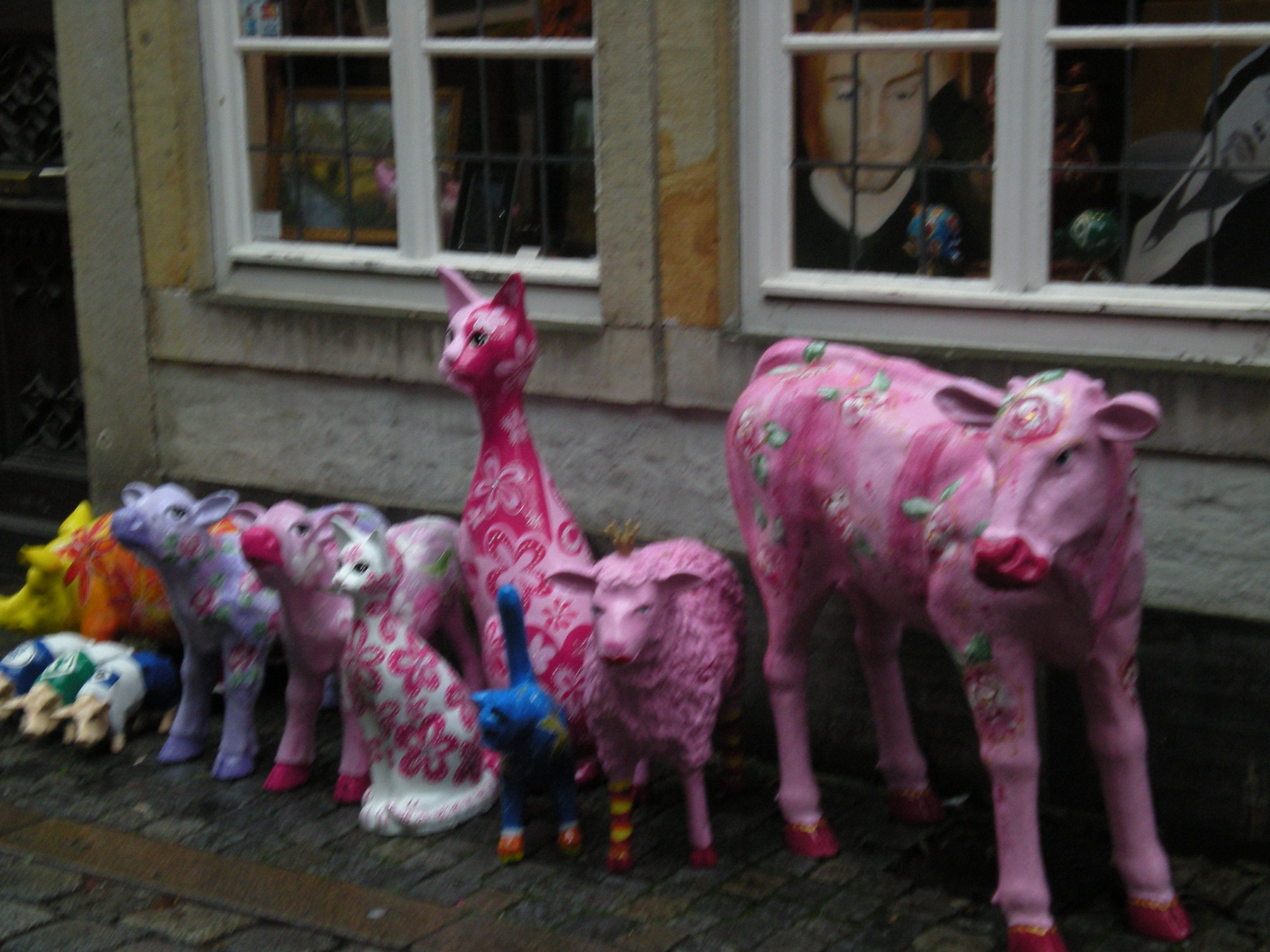 livestock in Bremen, Germany