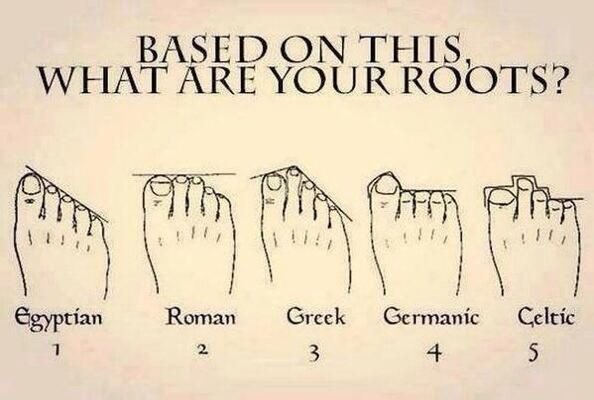 Based On This, What Are Your Roots?