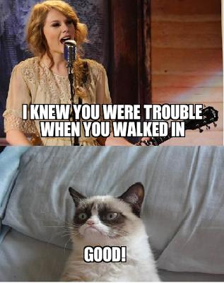Trouble Grumpy cat, Grumpy cat humor, Funny cats