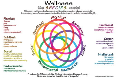 six dimensions of health and wellness Let's go through the six dimensions and think about the role of activity and fitness relate to the six dimensions of wellness six dimensions of wellness - wellness is an expanded idea of health and means more than absence from disease.