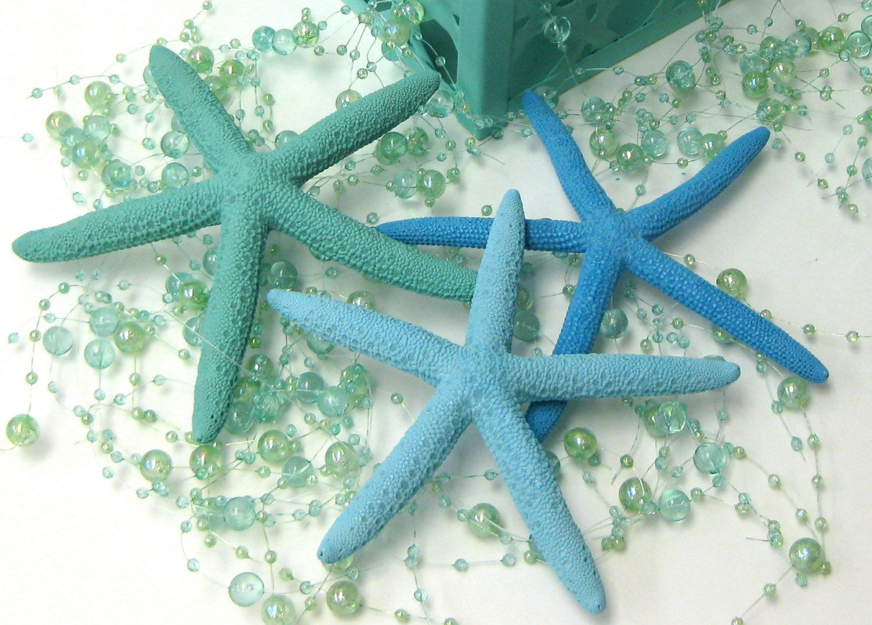 Beach Decor Set Of 5 Hand Painted Natural Starfish Etsy Beach Decor Ocean Home Decor Turquoise Home Decor