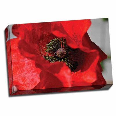 Picture it on Canvas 'Red Poppy I' Graphic Art Wrapped Canvas