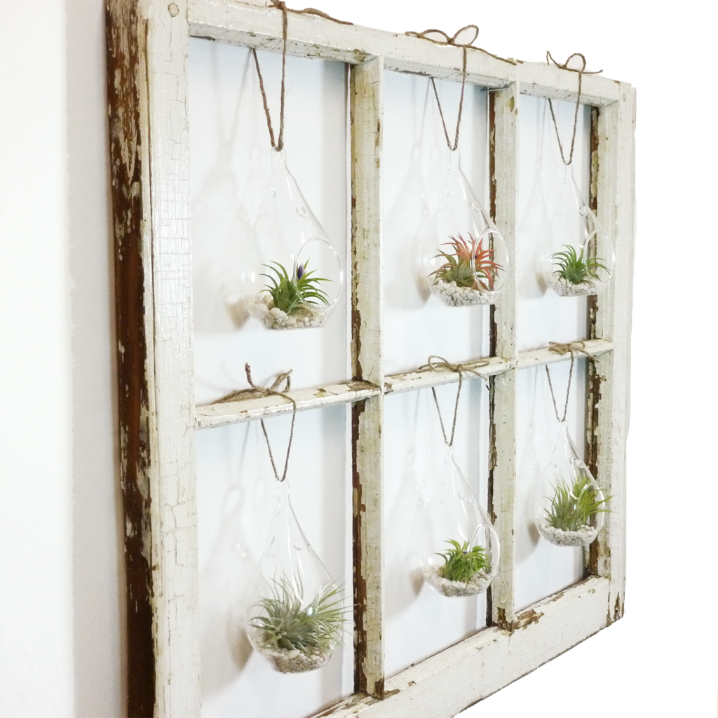 Window Frame Terrarium Wall Garden 6 Pane Window