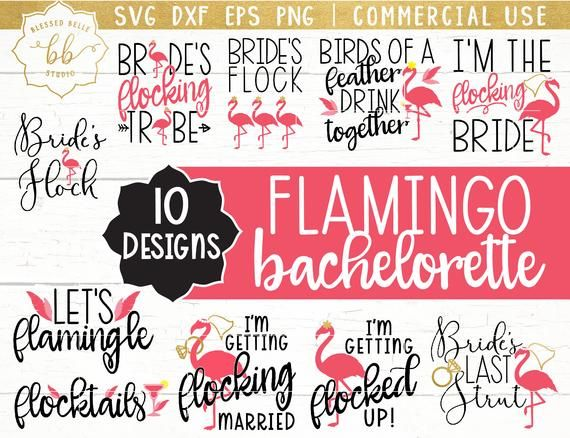 flamingo svg, Flamingo bachelorette SVG, flamingo bundle, bachelorette SVG, bridesmaids SVG, svg, eps, dxf, png file, Silhouette, Cricut