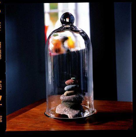 "tovah martin cloche | Glass Cloche from ""The New Terrarium"" Tovah Martin, photo by Kindra ..."