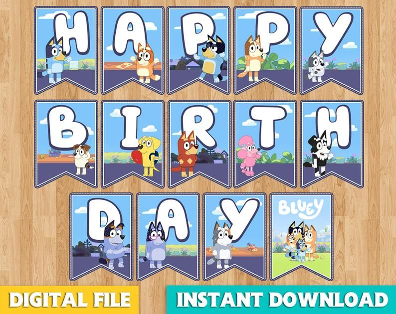 All Themed Kids Birthday Party Game Disney Cartoons Bunting Flag Banners Decor